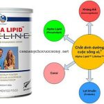 Sữa non alpha lipid lifeline từ new zealand